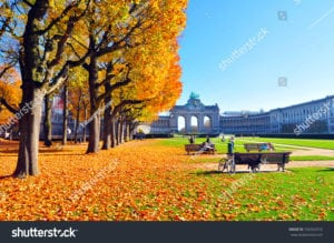 stock-photo-autumn-scenery-in-park-golden-trees-726363316